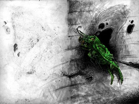 Ein Insekt verwandelt sich