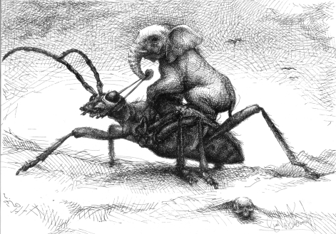 Elefant reitet auf Insekt Käfer Reiter Schädel Dimension Surealismus Zeichnung Kunst (1542x1080) brillenschnitzel